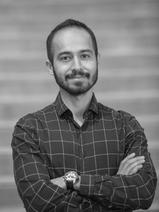 Amir Gholaminejad